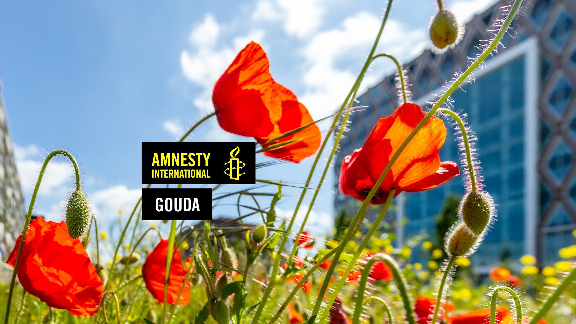 Amnesty International Gouda